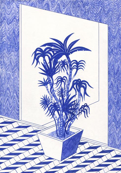http://kevinlucbert.com/files/gimgs/70_plante-copie.jpg