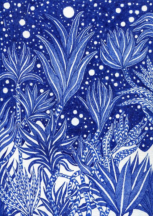 http://kevinlucbert.com/files/gimgs/79_floraison-nocturne.jpg